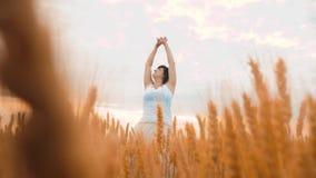 Modelo de moda del tamaño extra grande en vestido blanco que camina del vídeo de la cámara lenta en trigo del campo mujer gorda e metrajes