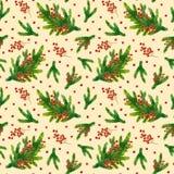 Modelo de Navidad de la acuarela con las ramas del abeto y las bayas rojas Imagen de archivo libre de regalías