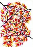 Modelo de ramas y de hojas de otoño Fotos de archivo