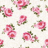 Modelo de Rose Foto de archivo