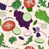 Modelo de Salade ilustración del vector