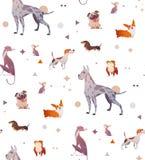 Modelo de un zueco simple con los perros libre illustration