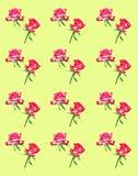 Modelo decorativo de rosas rosadas brillantes imagen de archivo libre de regalías