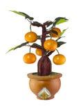 Modelo del árbol anaranjado Fotografía de archivo