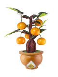 Modelo del árbol anaranjado Fotos de archivo