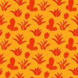 Modelo del cactus Imágenes de archivo libres de regalías