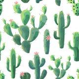 Modelo del cactus Textura inconsútil del vector