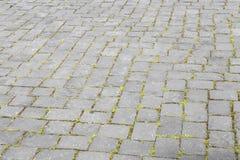Modelo del camino viejo de la piedra del adoquín Imagen de archivo