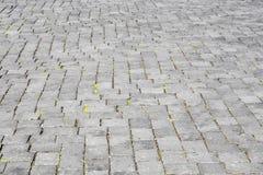 Modelo del camino viejo de la piedra del adoquín Imagenes de archivo
