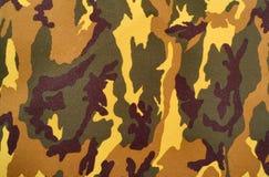 Modelo del camuflaje Fotos de archivo