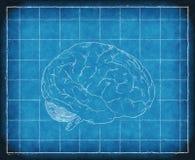 Modelo de Consiousness humano stock de ilustración