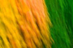 Modelo del color Fotos de archivo libres de regalías