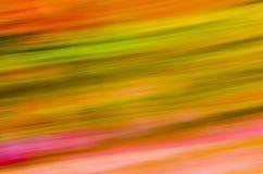 Modelo del color Fotografía de archivo