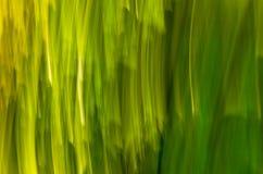 Modelo del color Fotografía de archivo libre de regalías