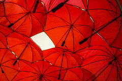 Fondo rojo del paraguas Foto de archivo