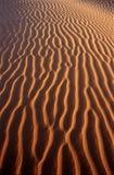 Modelo del desierto Imagenes de archivo
