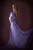 Modelo del embarazo Fotografía de archivo libre de regalías