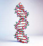 Modelo del filamento de la DNA Imagen de archivo libre de regalías