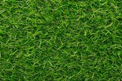 Modelo del fondo de la textura de la hierba verde Fotografía de archivo libre de regalías