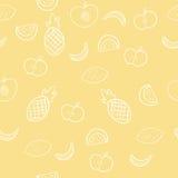 Modelo del fondo de los fruts del verano en vector Fotos de archivo libres de regalías
