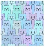 Modelo del gato Imagen de archivo libre de regalías
