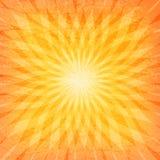 Modelo del Grunge del resplandor solar de Sun Foto de archivo libre de regalías