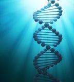 Modelo del hilo de la DNA Fotos de archivo libres de regalías