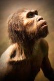 Modelo del hombre de las cavernas Imágenes de archivo libres de regalías