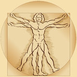 Modelo del hombre de Vitruvian Imágenes de archivo libres de regalías