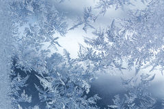 Modelo del invierno de Frost Imagen de archivo