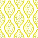 Modelo del limón en el fondo blanco Foto de archivo libre de regalías