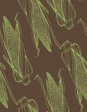 Modelo del maíz Fotos de archivo