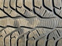 Modelo del neumático Foto de archivo