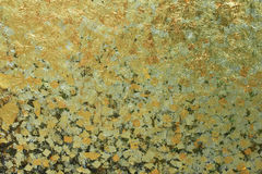 Modelo del oro Imagenes de archivo