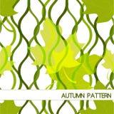 Modelo del otoño con las hojas Foto de archivo