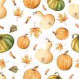 Modelo del otoño de la acuarela de las hojas y de las calabazas aisladas en whi libre illustration