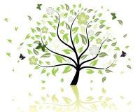 Modelo del árbol Imagenes de archivo