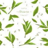 Modelo del té verde stock de ilustración