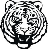 Modelo del tigre Fotografía de archivo libre de regalías