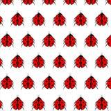 Modelo del vector de la mariquita La textura sin fin se puede utilizar para el papel pintado, imprimiendo en tela, papel, scrapbo Fotos de archivo libres de regalías