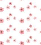 Modelo del vector del fondo con las flores de Sakura Foto de archivo
