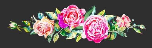 Modelo del vintage con las rosas de la acuarela del dibujo de la mano aisladas Imagenes de archivo