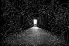 Modelo del webb de la araña Foto de archivo libre de regalías