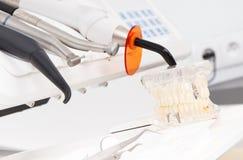 Modelo dental del mandíbula con las herramientas para usar de los dentistas en oficina de la estomatología Fotos de archivo