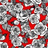 Modelo dibujado mano de las rosas Imagen de archivo libre de regalías