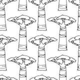 Modelo dibujado mano del baobab stock de ilustración