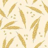 Modelo dibujado mano inconsútil de los oídos del trigo aislado en el fondo blanco como elemento del diseño de paquete stock de ilustración