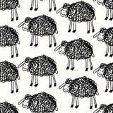 Modelo divertido con los sheeps Fotos de archivo
