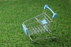 Modelo do carrinho de compras na grama artificial Imagens de Stock