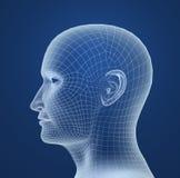 Modelo do fio da cabeça humana ilustração stock